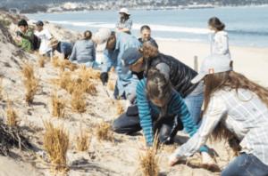 Salesian Project Ocean