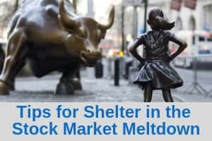 Tips for shelter in the stock market meltdown