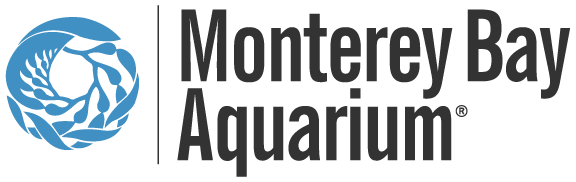 monterey bay aquarium summer camp