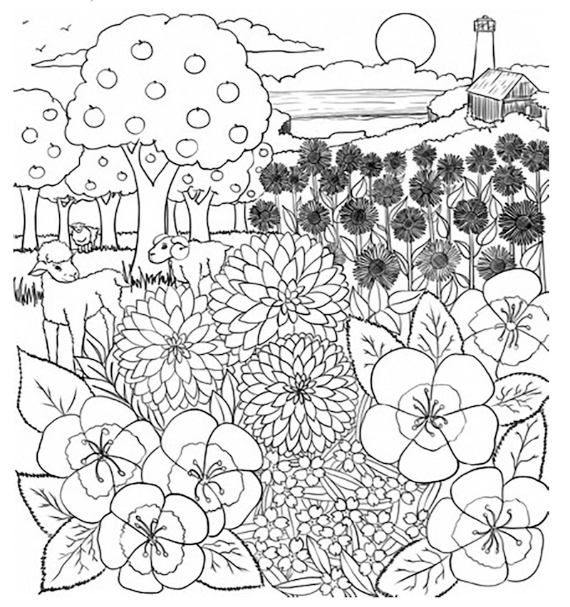 coloring contest santa cruz