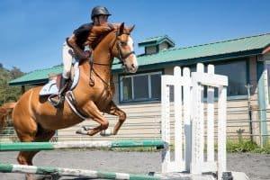 santa cruz horseback riding