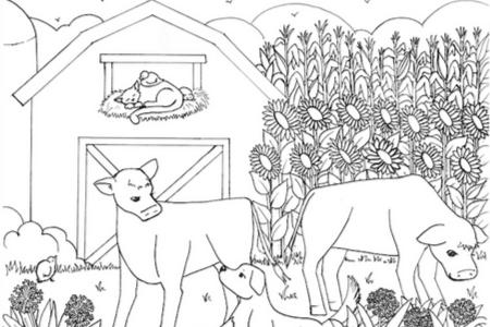 Santa Cruz farm coloring page