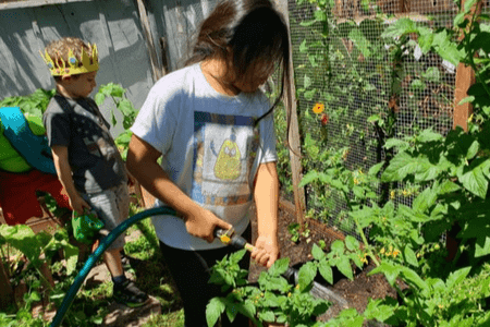 Little Garden Patch
