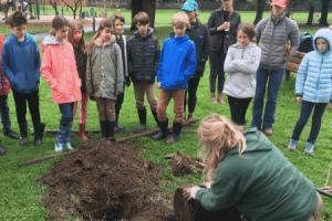 waldorf school tree planting