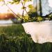 recycling plastic bags santa cruz
