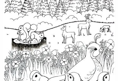 woodland coloring page for kids