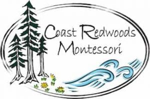 coast redwoods montessori santa cruz