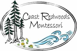 coast redwoods montessori santa cruz
