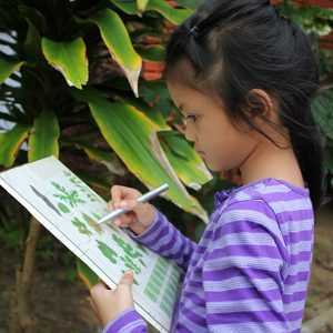 Asian children learning biology plant species outside the classr
